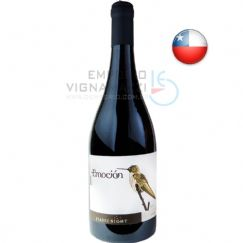 Foto Vinho Starry Night Emocion Syrah 750ml
