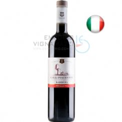 Foto Vinho Colli Piacentini Barbera 750ml