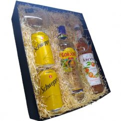 Foto Kit dia dos Pais Gin Gordon's 750ml