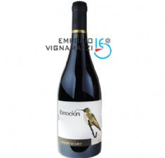 Foto Vinho Starry Night Gran Reserva Syrah 750ml